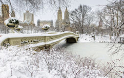 Central Park in winter with snow Stock Photos