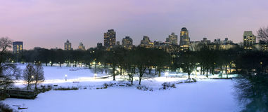 Central Park in winter Royalty Free Stock Photo