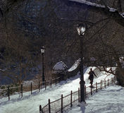 Central Park Winter Walk USA. New Yorker walks in winter afternoon in Central Park South stock photography