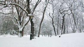 Central Park zima Nowy Jork Fotografia Royalty Free