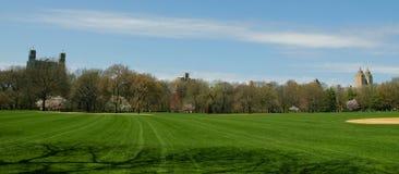 Central- Parkbaseballfeld Stockbilder