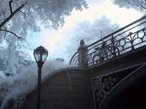 Central- Parkinfrarot Stockfotografie