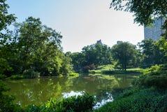 Central Parklandschap Royalty-vrije Stock Afbeelding