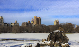 Central Parksikt till highrisebyggnaderna Royaltyfri Fotografi