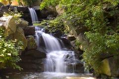 Central- Parkwasserfall Stockbild