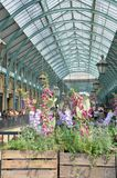 Central Piazza Convent Garden with Flowers in Foreground in portrait aspect. Covent Garden London England, United Kingdom - August 16, 2016: Central Piazza Royalty Free Stock Photography