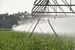 CENTRAL PIVOT IRRIGATION Stock Image