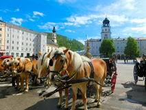 Central place in Salzburg city with carriages and horses Royalty Free Stock Photos