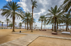 Central public beach in Eilat Stock Image