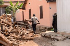 Unidentified Ghanaian man carries a wooden log from behind in l. CENTRAL REGION, GHANA - Jan 17, 2017: Unidentified Ghanaian man carries a wooden log from behind stock photos