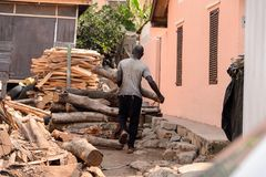 Unidentified Ghanaian man carries a wooden log from behind in l. CENTRAL REGION, GHANA - Jan 17, 2017: Unidentified Ghanaian man carries a wooden log from behind royalty free stock images