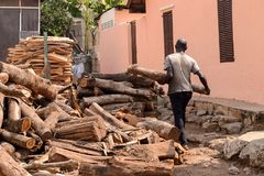 Unidentified Ghanaian man carries a wooden log from behind in l. CENTRAL REGION, GHANA - Jan 17, 2017: Unidentified Ghanaian man carries a wooden log from behind stock image