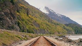Central sammansättning, järnväg Molnig dag för sommar stock video