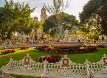 Central square with fountain and Cathedral in provincial town. Cosy Mexican square with Cathedral, fountain and benches Royalty Free Stock Photo