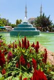 The central square with a fountain in the village. Royalty Free Stock Photo