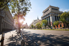 The central street of Madrid. Sunlight. Walking in Madrid in the summer. Trees and buildings against the blue sky Royalty Free Stock Photo
