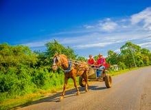 CENTRAL VÄG, KUBA - SEPTEMBER 06, 2015: Häst och Fotografering för Bildbyråer