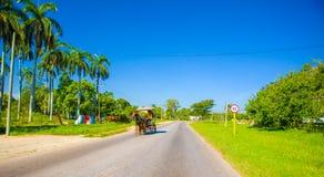 CENTRAL VÄG, KUBA - SEPTEMBER 06, 2015: Häst och Royaltyfri Foto
