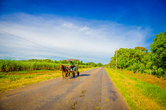 CENTRAL VÄG, KUBA - SEPTEMBER 06, 2015: Häst och en vagn Royaltyfria Foton