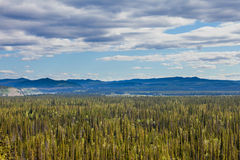 Central Yukon T Canada taiga and Ogilvie Mountains Royalty Free Stock Photos