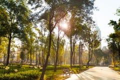 Centrala Alameda parkerar morgon i Mexico - stad Royaltyfria Foton