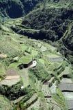 centrala cordillera philippines riceterrasser Arkivfoto