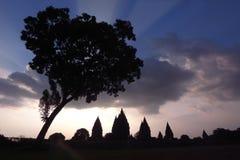 centrala indonesia prambanan java fördärvar Arkivbilder