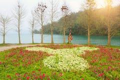 centrala ljuva lakemoonberg placerar avkopplingrestsunen taiwan riktigt Royaltyfri Bild