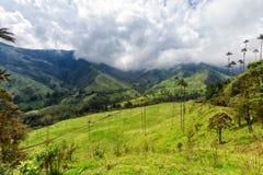 centrala majestätiska berg för den cocorakaffecolombia cordillera berömda växande ligganden som nationalen gömma i handflatan, va arkivbild
