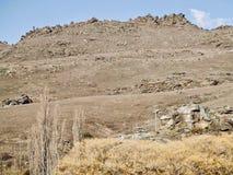 Centrala Otago Rocky Hills i vinter royaltyfria foton
