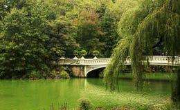 Centrala Park, Miasto Nowy Jork fotografia stock
