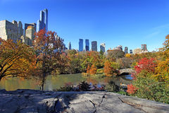 Centrala park przy słonecznym dniem, Miasto Nowy Jork Fotografia Stock
