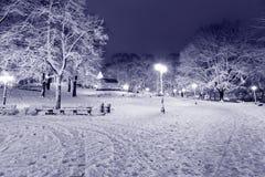 Centrala park w Ryskim, Latvia przy zimy nocą Fotografia Royalty Free