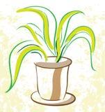 Centrale dans un flowerpot illustration de vecteur