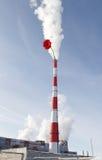 Centrale elettrica termoelettrica con il fiore immagine stock