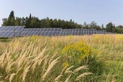 Centrale solaire sur le pré fleurissant d'été Photo stock