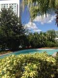 Centrale tropicale Photo libre de droits