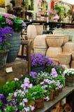 Centrales à la jardinerie photographie stock libre de droits