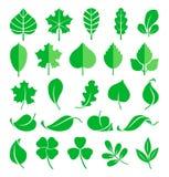 Centrales croissantes Pousses de feuille et d'herbe Illustration de vecteur dans le style plat illustration stock