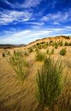 Centrales dans le désert images libres de droits