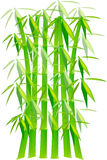 Centrales en bambou vertes Photos libres de droits