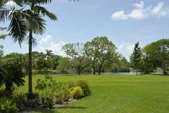 Centrales et arbres dans un jardin Photographie stock