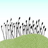 Centrales et herbe illustration stock
