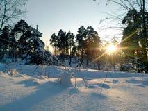 Centrales sèches dans la neige image libre de droits