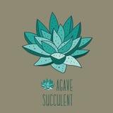 Centrales succulentes illustration stock