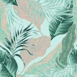 Centrales tropicales illustration libre de droits