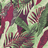 Centrales tropicales illustration stock
