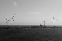 Centrali eoliche sui precedenti in bianco e nero dell'isola Fotografia Stock