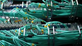 Centralino cripto moderno dell'azienda agricola di estrazione mineraria con i cavi collegati stock footage