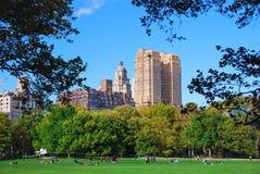 centralne miasto Manhattan nowy parkowy York Obrazy Royalty Free